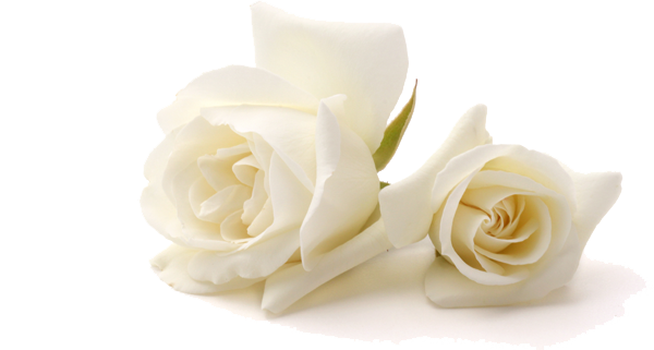 Cremation funerals London
