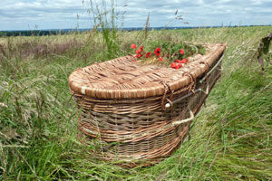 natural burial coffin